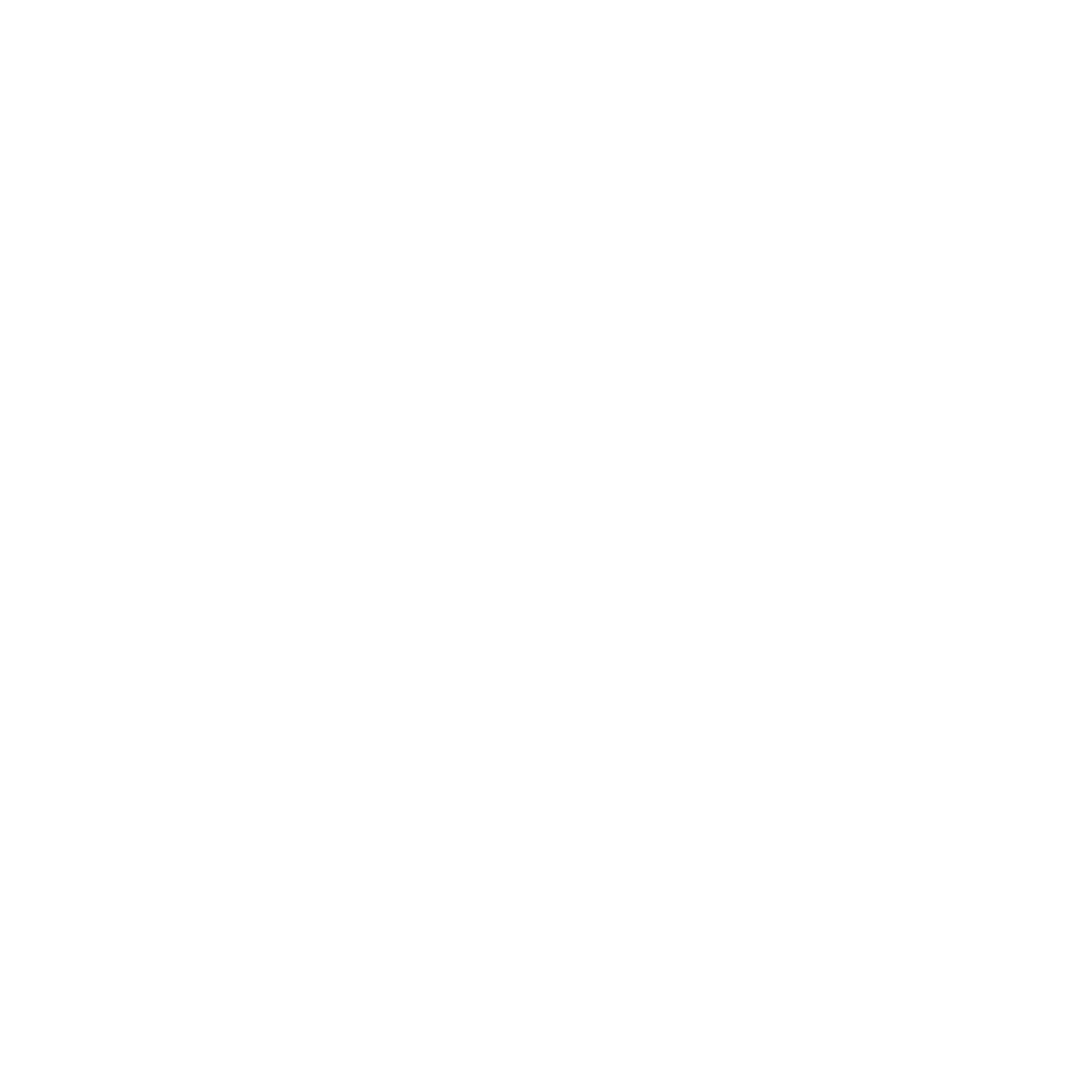 Traditional Acupuncture Plus